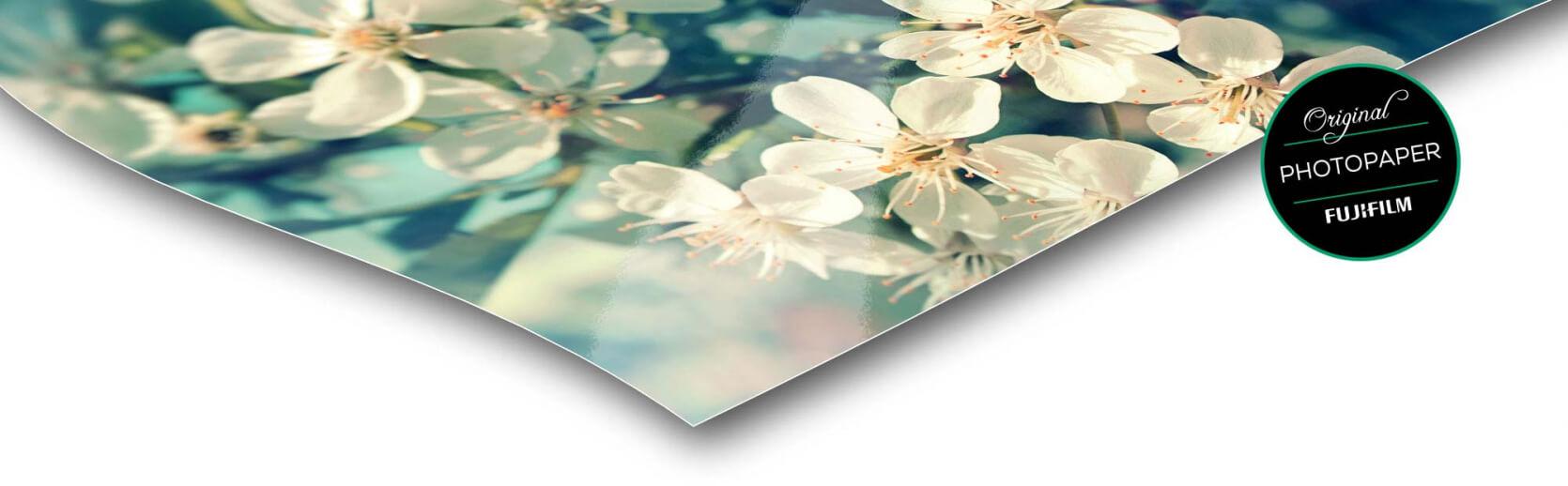 fotopapier foto op dibond zijdeglans